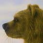 psgreendog